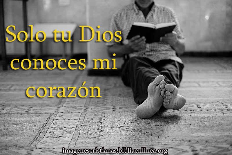 solo tu conoces mi corazon Dios