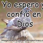 Imagen y frase cristiana Yo espero y confio en Dios