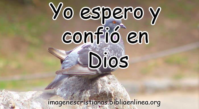 yo espero y confio en Dios
